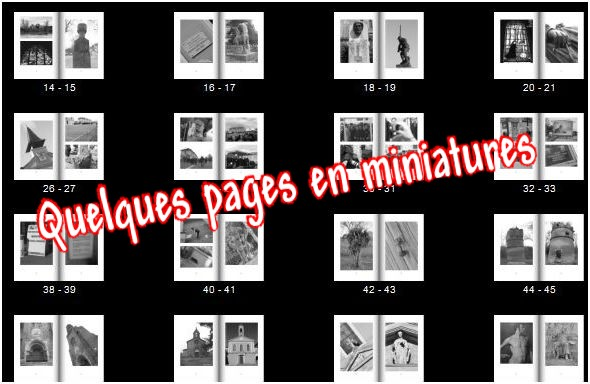 quelques pages en miniatures